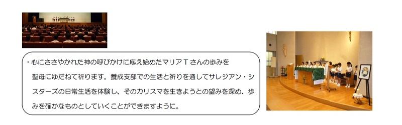 sizuoka3